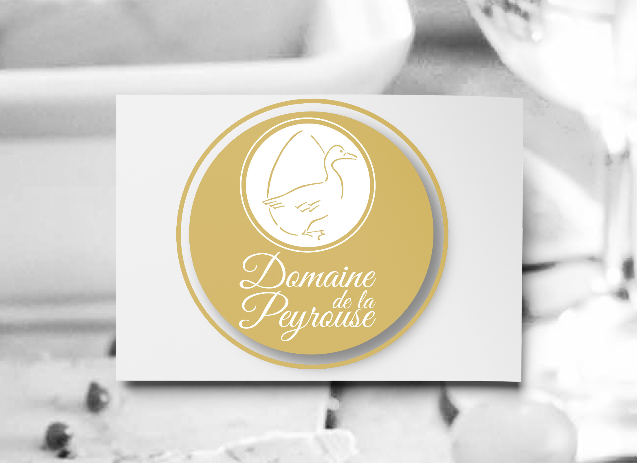 You are currently viewing DOMAINE DE LA PEYROUSE